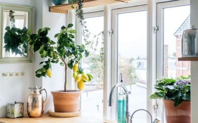 5 TIPS TO GET YOUR KITCHEN FEELING LIKE SUMMER